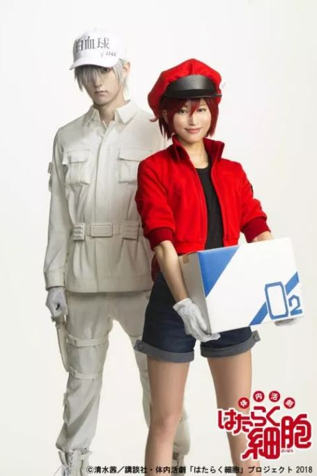 Penampilan Karakter White Blood Cell (Wada) dan Red Blood Cell (Nanaki)